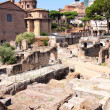 Ruins of the Roman Forum, in Rome, Italy — Stock Photo