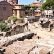 Ruins of the Roman Forum, in Rome, Italy - Stock Photo