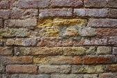 Venice, masonry under crumbling plaster — Stock Photo