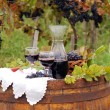 Stock Photo: Autumn scene with red wine and grape