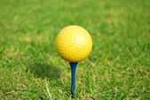 Yellow golf ball — Stok fotoğraf