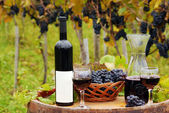 Vineyard with red wine bottle and wineglasses — Stock Photo