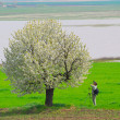 Stock Photo: Photographer photographing spring tree