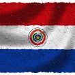 Flag of Paraguay — Stock Photo #5199934