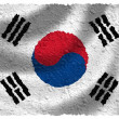 Flag of South Korea — Stock Photo #5200107