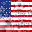Soccer USA — Stock Photo #5200988