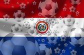 Soccer Paraguay — Stock Photo