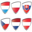 Central 1 Europe Shield flag - Stock Vector