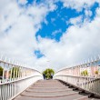 Ha'penny bridge dublin - Stock Photo
