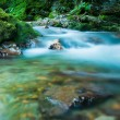 KaludrRiver, Montenegro — Stock Photo #3947827