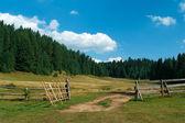 Mountain Ranch — Stock Photo