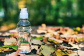 Bouteille d'eau dans le motif d'automne — Photo