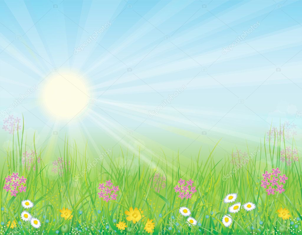 Bright, natural background with the fresh grass and wild flowers — Stockvectorbeeld #4655977