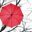 Постер, плакат: Red Umbrella