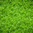 High resolution artificial turf, green grass image — Stock Photo