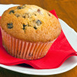 Muffin on a white plate — Foto Stock