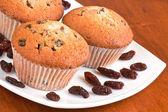 Muffins sur une plaque blanche — Photo