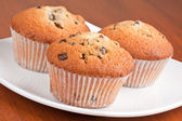 Muffins on a white plate — Stock Photo