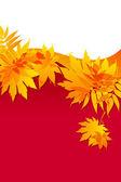 осенние листья на красном фоне — Cтоковый вектор