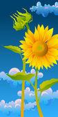 Mooie zonnebloemen — Stockvector