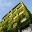 Building covers by real green plants - Stock Photo