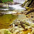 Small river with waterfall and rocks. — Stock Photo