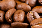 Full of coffee bean — Stock Photo
