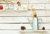 Plants on white rough wooden wall as Decoration — Stock Photo