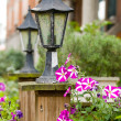 Classic garden lamp with blooming Petunia — Stock Photo