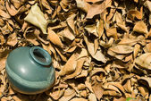 Dried-up fallen leaves with old chinese pottery. — Stock Photo