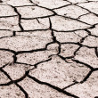 Drought land was cracked. — Stockfoto #5196630