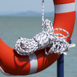 Life-rescue ring is standby — Stock Photo