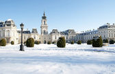 Detail from the Festetics castle in Keszthely, Hungary — Stock Photo