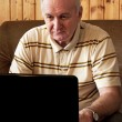 Stock Photo: Senior mis working on laptop in living-room