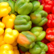 Close up of red, yellow and green peppers - Stock Photo