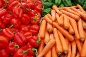 Close up of many colorful vegetables — Stock Photo