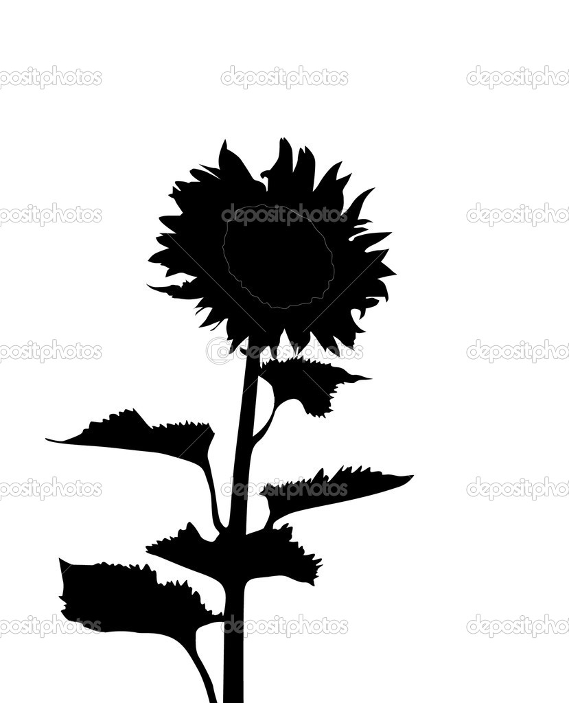 Sunflower silhouette, element for your design — Stock Vector #4625104