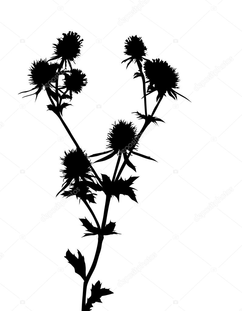 Flower silhouette, element for design — Stock Vector #5031888