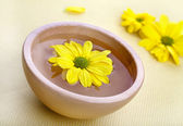 Yellow flowers in wooden bowl — Stock Photo