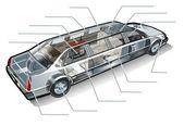 Vector limousine inforgaphics cutaway — Stock Vector