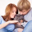 Couple with a cat - Stockfoto