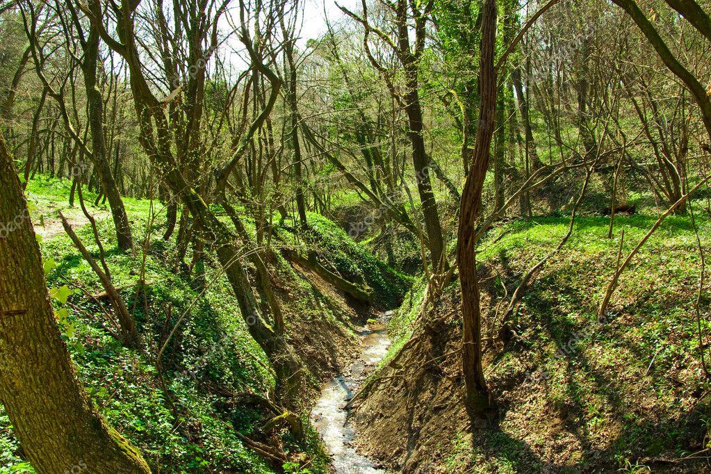 Izvori, potoci i rijeke - Page 6 Depositphotos_5339680-Mountain-spring