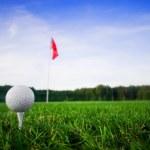 Golf field — Stock Photo