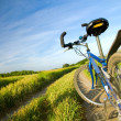 Stock Photo: Bike on the summer field