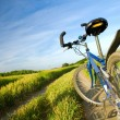 Bike on the summer field — Stock Photo