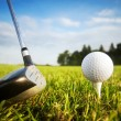 Playing golf. Club and ball on tee — Stok fotoğraf