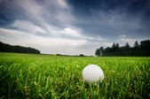 Golf ball on on the field — Stock Photo