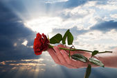 Holding red rose in romantic scenery — Stock Photo