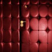 Luxury red leather door in retro style — Stock Photo