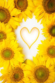 Flowers background with heart symbol — Stockfoto